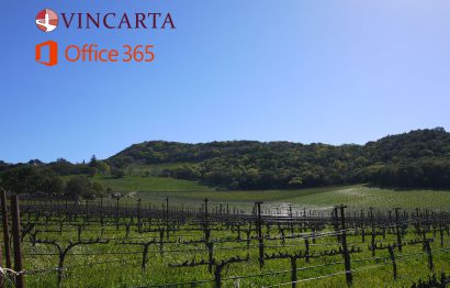The words Office 365 and Vincarta above a beautiful vineyard